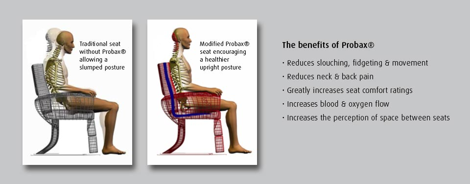 Additional lumbar support provided by Probax seating